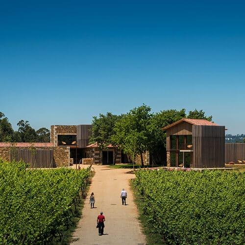 Monverde – Wine Experience Hotel - Paisagem Vinha